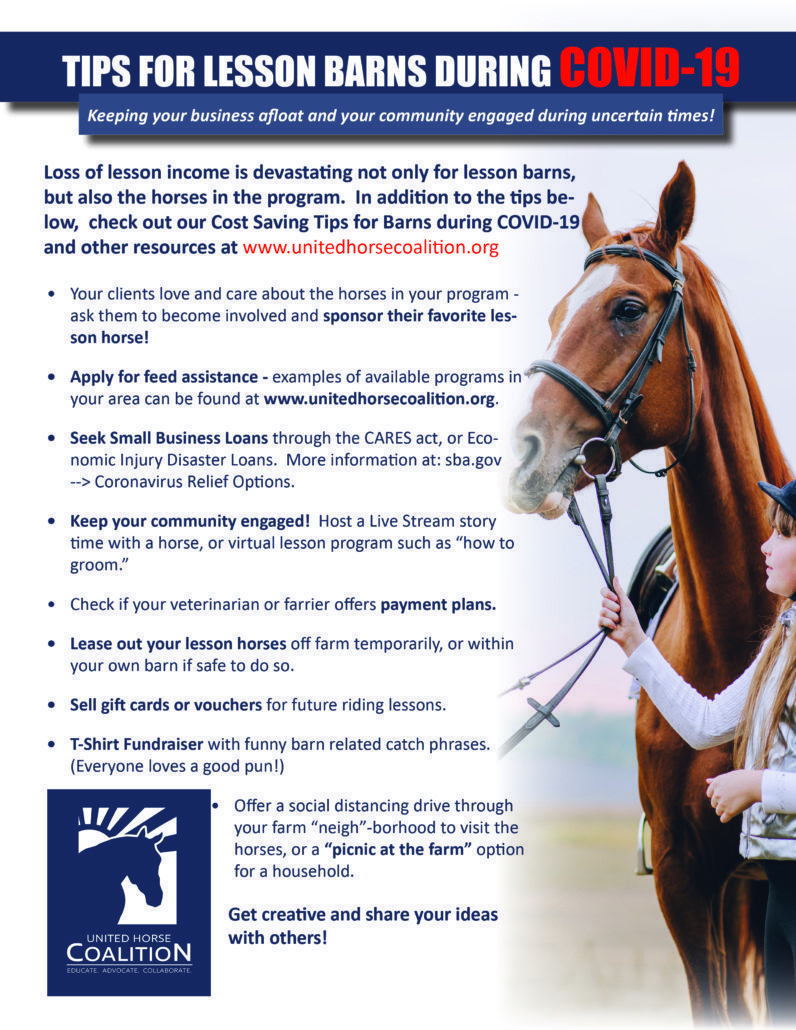 Covid 19 Resources United Horse Coalition